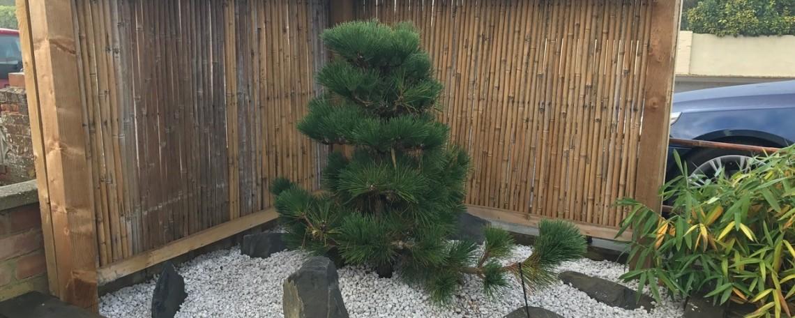 pine-in-pumice-media